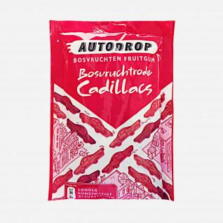 Autodrop Cadillac